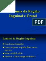 Anatomia+da+Região+Inguinal+e+Crural_1