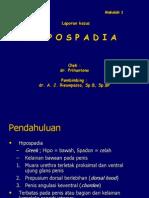 183799726-HIPOSPADIA-ppt