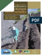 manual agroecologia.pdf