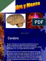 cerebroymente-120729110612-phpapp01