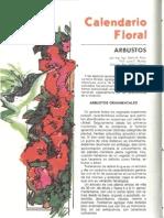 Calendario Floral Arbustos Botanica BSE