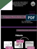 Colgajos Cutáneos y Miocutáneos