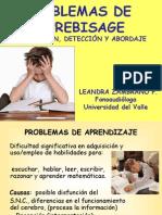 Problemas de Aprendizaje Bquilla 2014 Pp