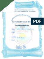 Historia de La Obstetricia en El Perú y Tumbes