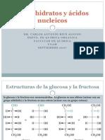 Estructura Del Azucar