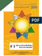 001 Desarollo Integral P3000 2013
