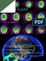 Dolor y Placer Version 97-2003