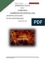 Combustion Camilo