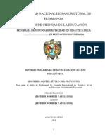 Esquema Del Informe Preliminar Iap- Ciclo III