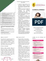 El Estrés en La Universidad Upch PDF
