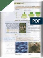 8_cambios en Los Ecosistemas