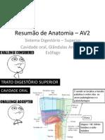 Resumão de Anatomia _ AV2
