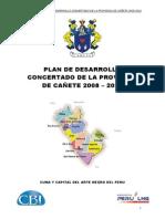 Pdc Provincia d Cañete