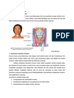 Biosintesis Hormon Tiroid