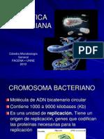 Genetica.bacteriana.1670837008