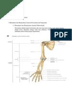 PBL S1 Blok Muskuloskeletal