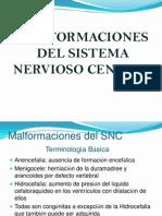 4-Malformaciones Del Snc