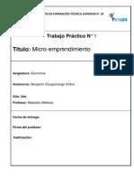 Micro Emprendimiento, Satelital