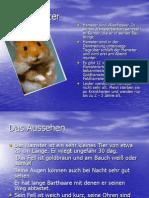 der_hamster.ppt