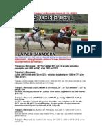 Traqueos_La_Rinconada_WWW (1).pdf