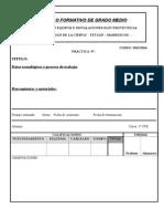 Ficha Practficha