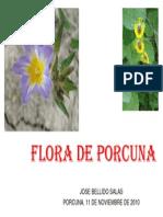 Flora de Porcuna