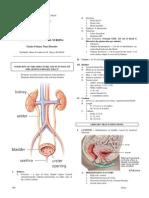 genito-urinarysystem