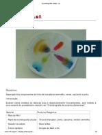 Cromatografia Radial