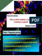 04ImmuneCells+Fagocitosis.pdf