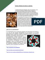 trabajo ecrito de Carbohidratos.docx