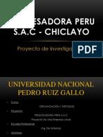 Proyecto - Procesadora Peru Sac - Oym