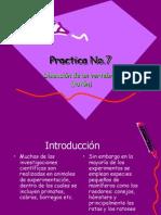 Practica No7