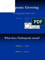 Hydroponic Growing Power Point Presentation Mar10 TH