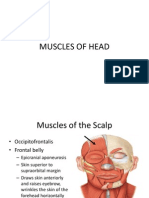 Muscles of Head and Neck