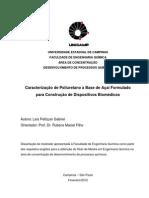 GabrielLaisPellizzer_M.pdf