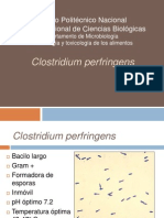 Clostridium Perfringens Eq 27