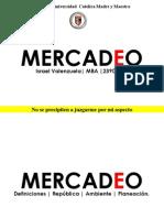Tema 1 Mercadeo y Planeacic3b3n Estratc3a9gica de Marketing