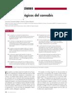 2013 Taller Drogas AMPap Cannabis FMC