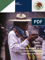 Consulta Sobre Alcoholismo Pueblos Indigenas