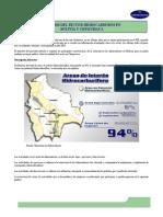 Analisis Del Sector Hidrocarburos en Bolivia y en Chuquisaca [Spanish]
