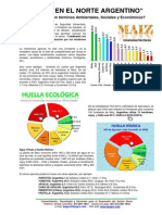 Agro en el Norte Argentino.pdf