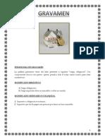 Etimologia de Gravamen 1