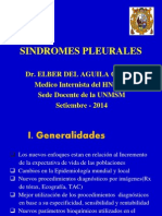 SINDROMES PLEURALES-2014
