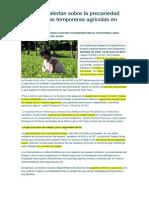 FAO y OIT Alertan Sobre La Precariedad Laboral de Las Temporeras Agrícolas en ALC
