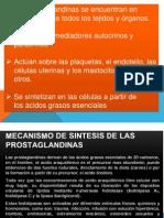 prostaglandinas.pptx