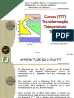 1.4.4- Curvas TTT