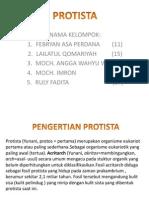 Biologi Protista