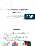 Introduction to Human Anatomy