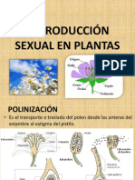 Sem 15 Reproducción Sexual y Vegetativa en Plantas - Metamorfosis