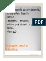 Propagacion de Portainjertos [Modo de Compatibilidad]